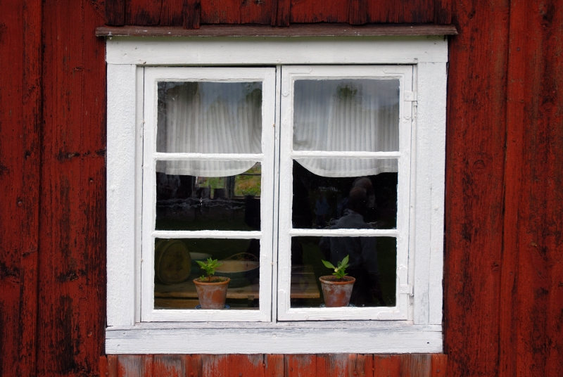 56533-window1