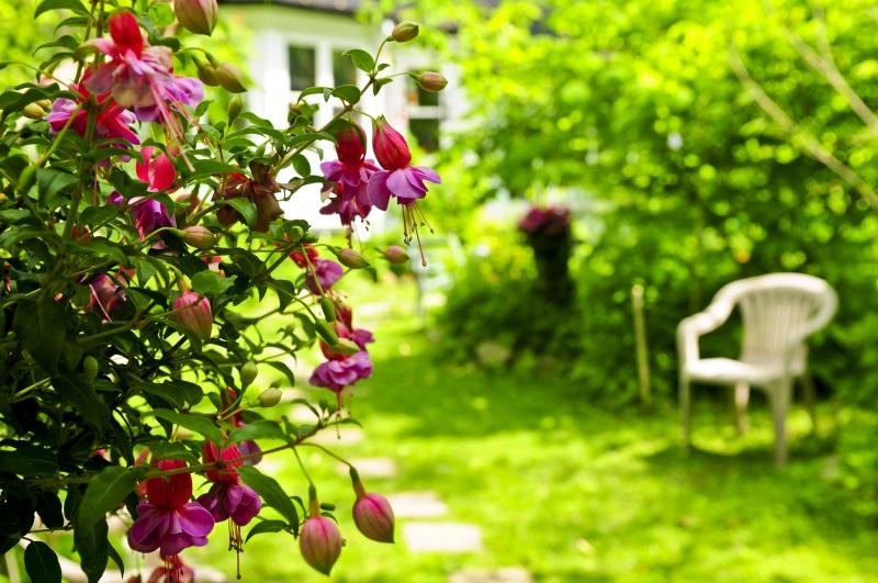 301515-home-and-garden